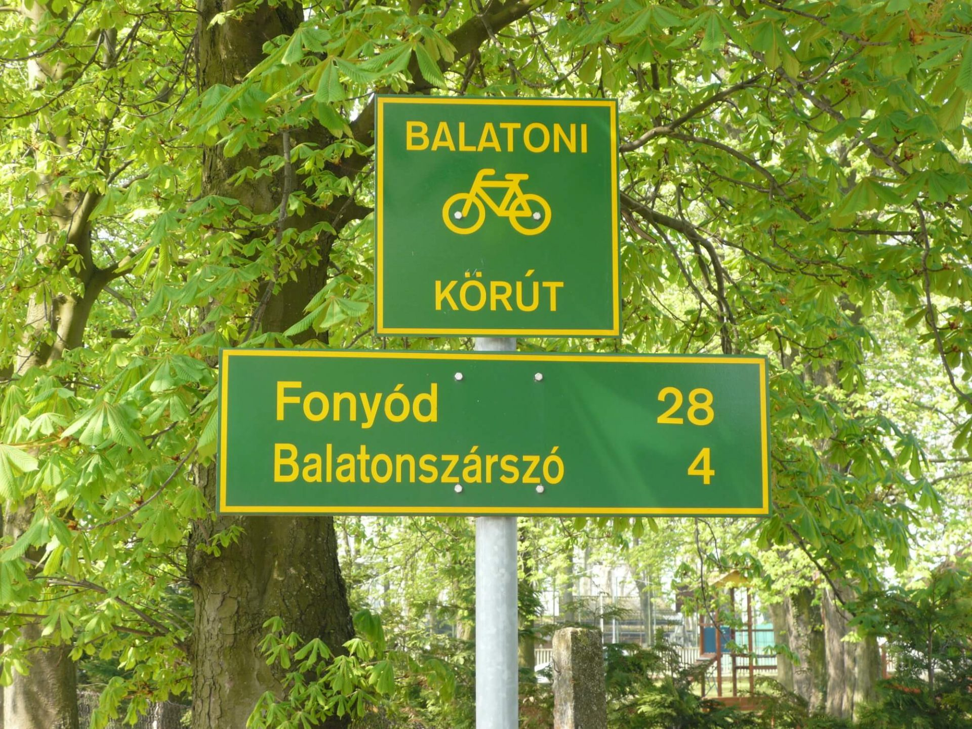 balatoni-biciklizes