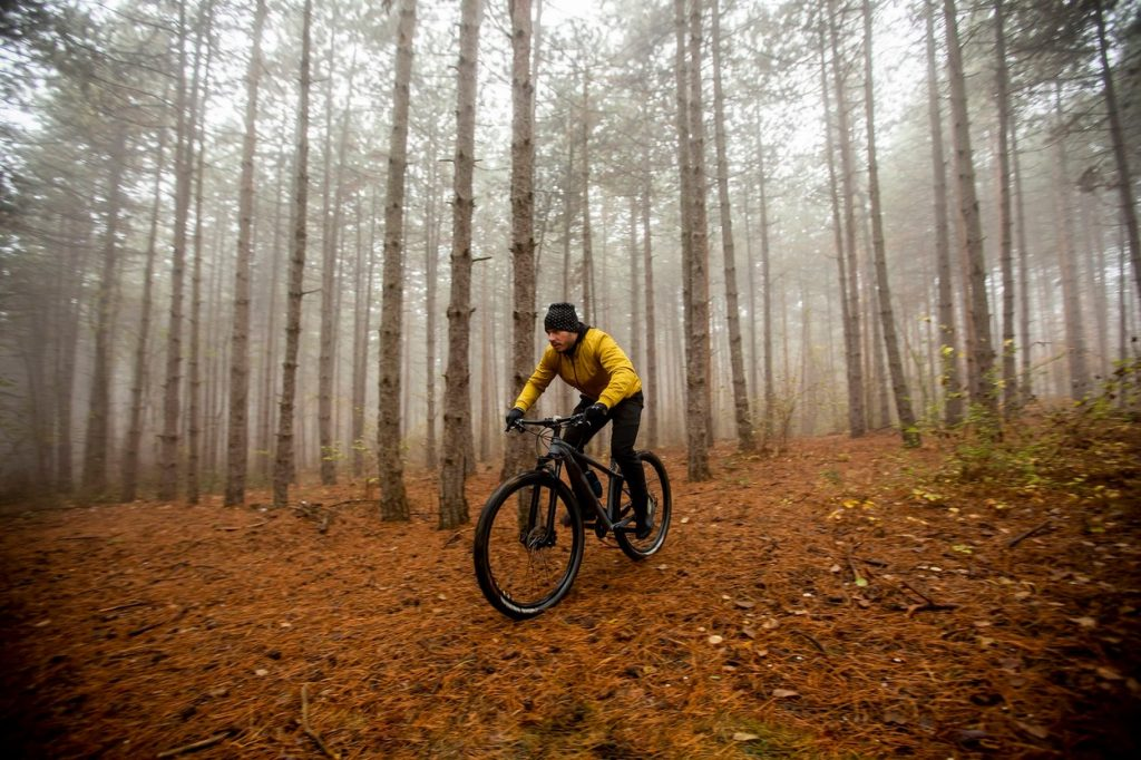Cyclist in the woods