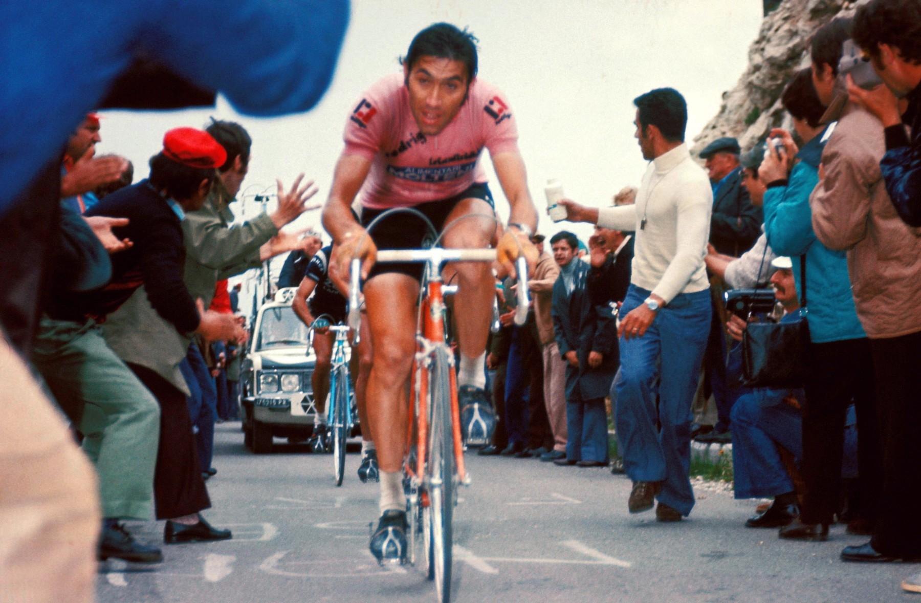 Eddy Merckx v roce 1975 při stoupání na Monte Grappa v růžovém dresu lídra italského Gira.