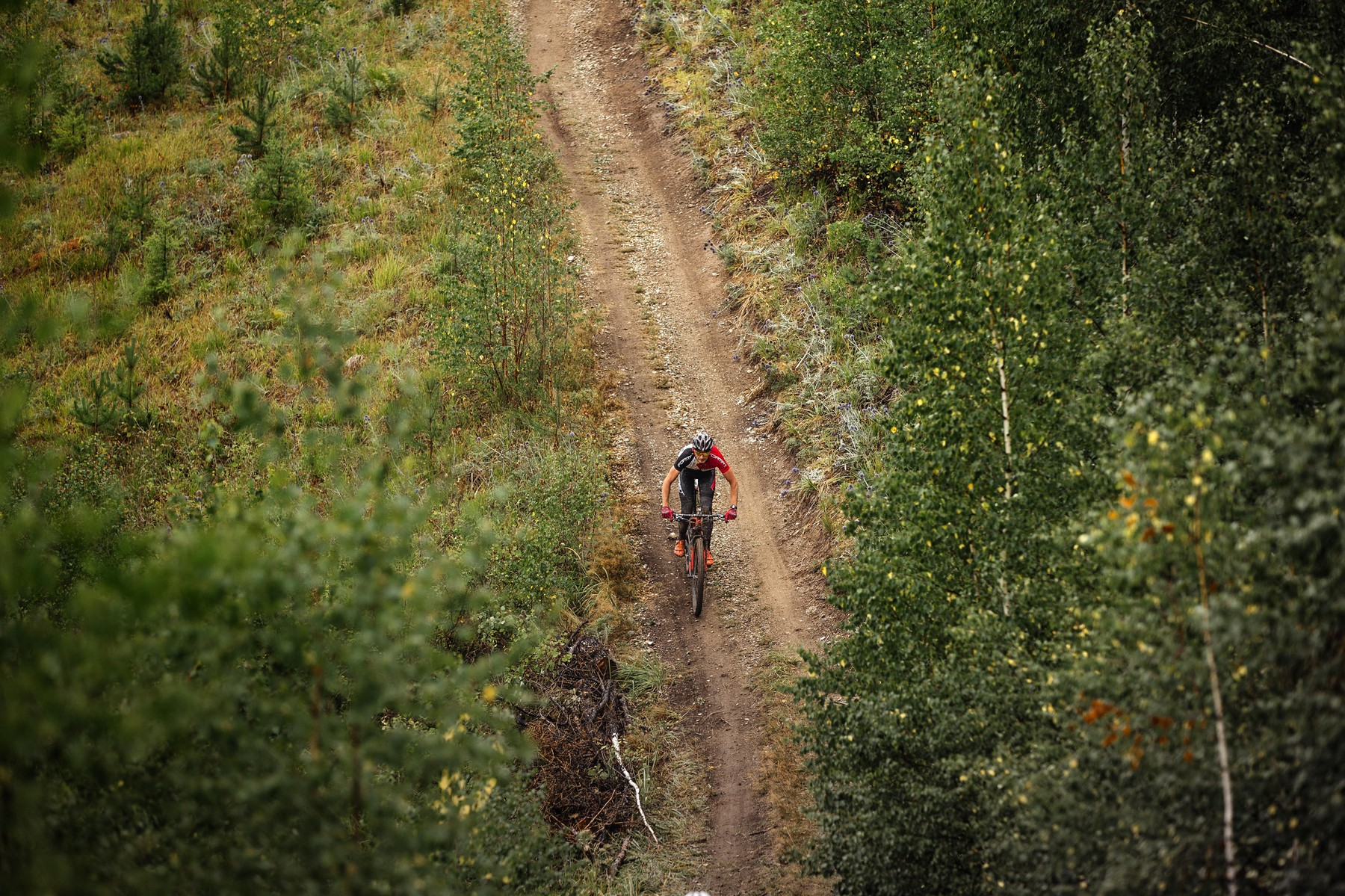 general plan rider a cyclist riding along a forest trail during Regional competitions on cross-country bicycle
