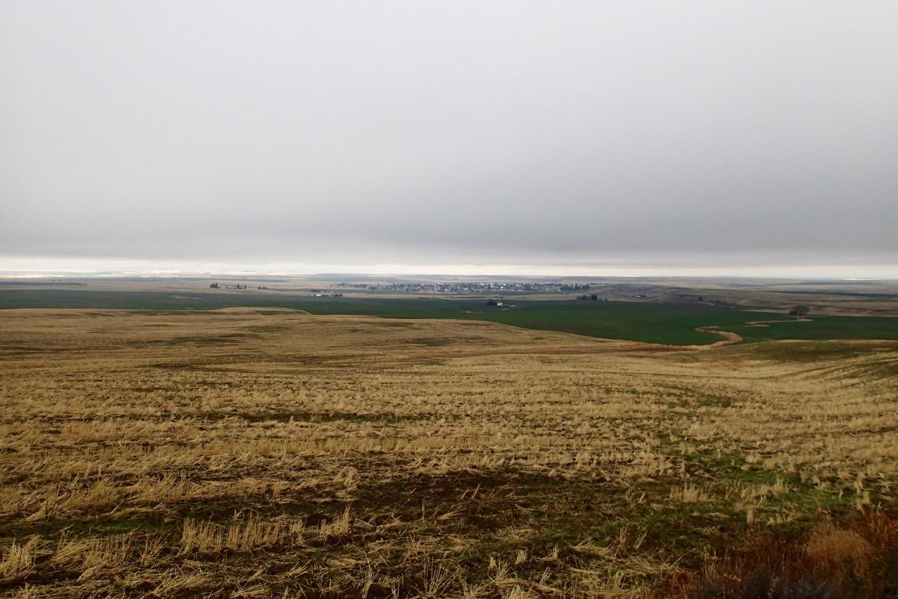 Farmland and in the far distance Davenport