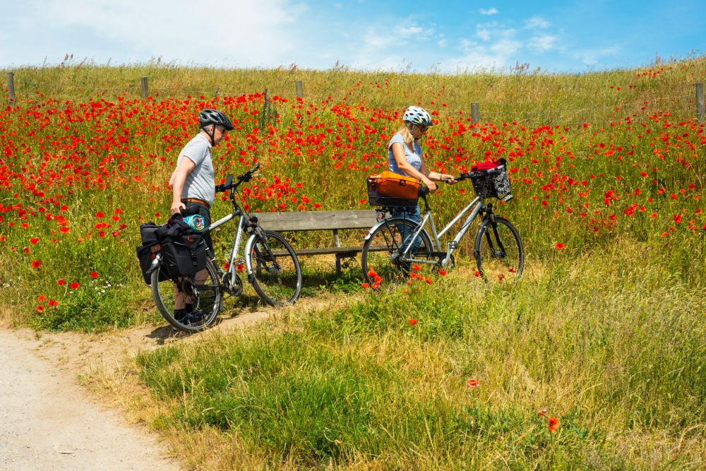 Cyclists in nature