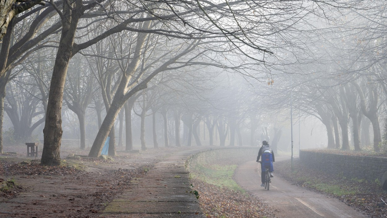 Cycling in the Mist